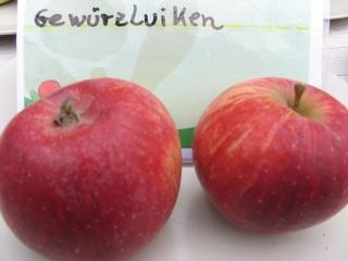 apfel james grieve apples